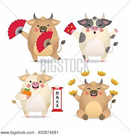 2021 Year Of The Ox Chinese New Year Character Design. Cute Cartoon Cow Holding Hand Fan, Red Packet