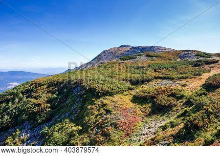 The Peak Of Babia Gora In Beskid Sadecki In Poland, Mountain Landscape On A Sunny Summer Day
