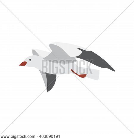 Free Hovering In Sky Flying Sea Gull A Vector Isolated Illustration