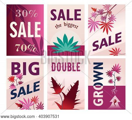 Creative Big Sale Brochure Designs For Ganja Store. Modern Pink Posters With Cannabis Leaves And Con