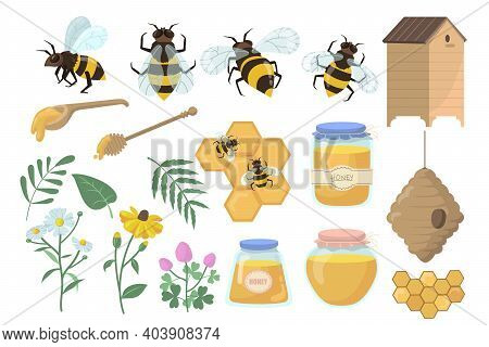 Bees And Honey Set. Flowers, Beehive And Honeycombs, Jar, Pot And Dipper Isolated On White Backgroun