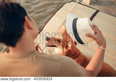 A Man Play Guitar Music Song Near The Sea Sunset And Try Wearing Hat In Dog Head. Travel, Vocation,
