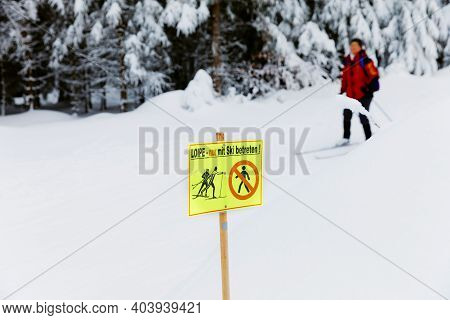 Group Of People Cross Country Skiing On Beautiful Winter Day. Cross-country Skiing In Germany, In Sn