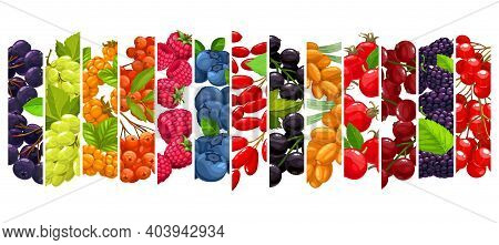 Kitchen Glass Wall With Berries Black Chokeberry, Grapes And Cloudberry, Rowanberry, Raspberry With