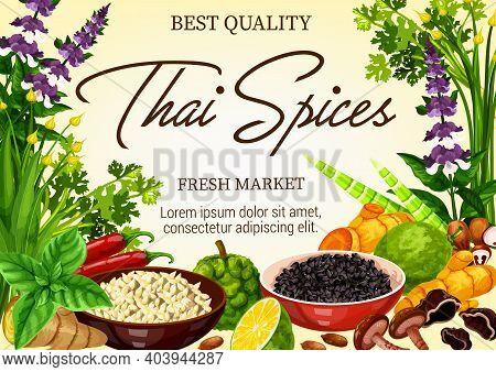 Thai And Seasonings Market Banner. Kaffir Lime, Sesame Seeds And Shiitake Mushrooms, Ginger, Turmeri