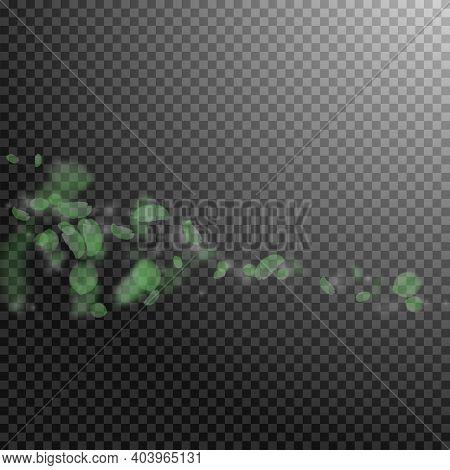 Green Flower Petals Falling Down. Wondrous Romantic Flowers Comet. Flying Petal On Transparent Squar