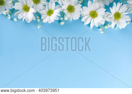 Floral Summer Background With Daisy Flowers, On Light Blue Background. Festive Summer Holiday Backgr