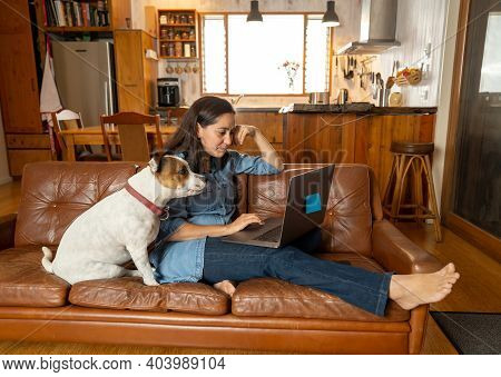 Woman Working From Home Using Laptop With Pet Dog Sitting Next To Her
