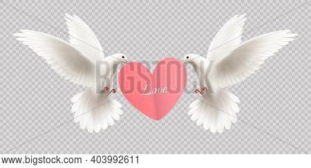 Love Design Concept With Two White Pigeons Holding Heart In Its Beak On Transparent Background Reali