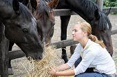 teenage girl feeding horses in the farm poster