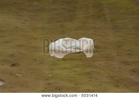 Plastic In River