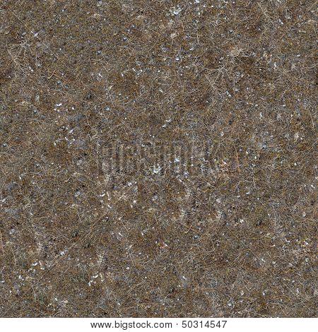 Seamless Texture of Soil Post-apocalyptic Period.