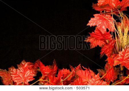 Autumn Border Ii