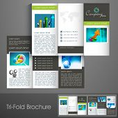 Professional business three fold flyer template, corporate brochure or cover design, can be use for publishing, print and presentation.  poster