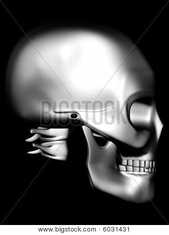 Side View Of Chrome Skull