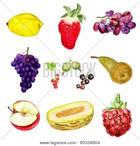 Watercolor Berries And Fruits