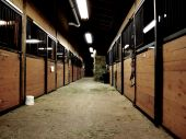 Late night shot of an equestrian barn poster