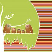 Family of five owls perched in their cozy tree, a colorful striped background poster