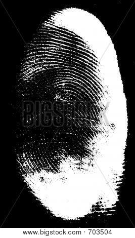 Real Partial Fingerprint