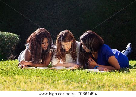 Three Friends Studying