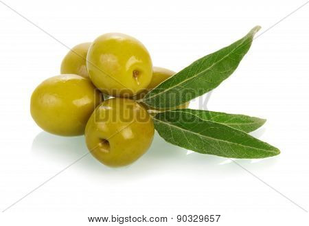 Olives on twig