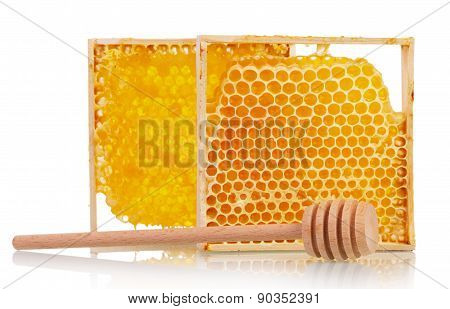 honeycombs with honey dipper