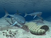 3d digital art render of 2 sharks under the sea with a small school of fish poster