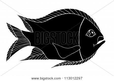 Hand Drawn Fresh Fish