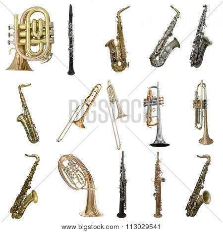 Wind musical instruments isolated under the white background