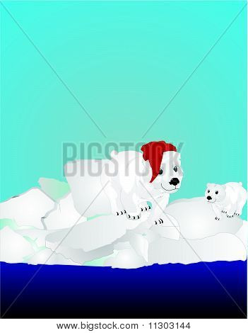 Two Polar bears on ice pack