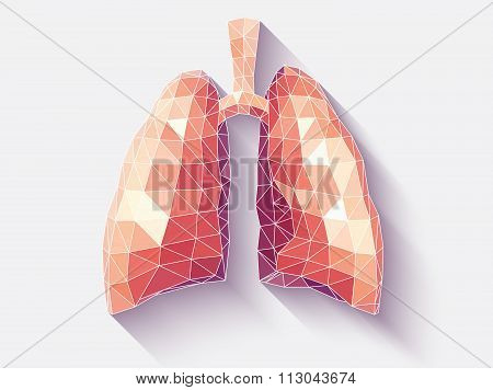 Lungs Faceted
