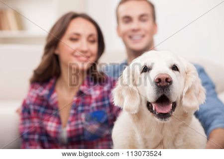 Cute boyfriend and girlfriend with pretty puppy