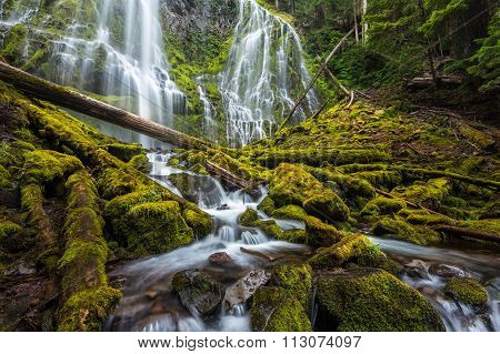 Beautiful Proxy Falls In Oregon Forest
