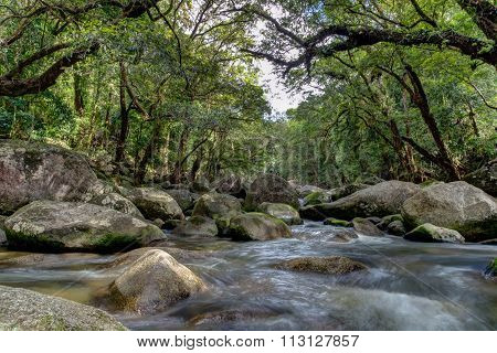 Photograph of a stream in the Mossman river gorge in Queensland, Australia. poster