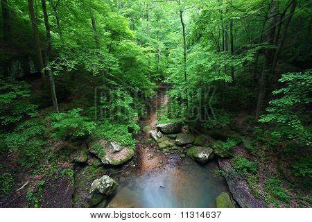 Alabama-Landschaft