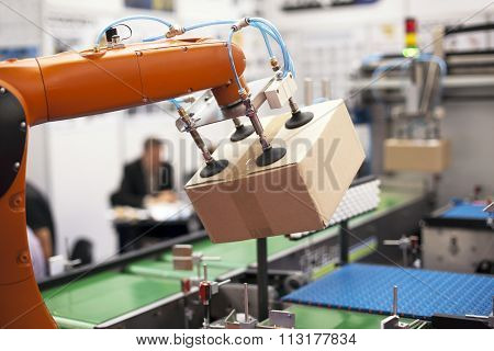 Robotic arm for packing