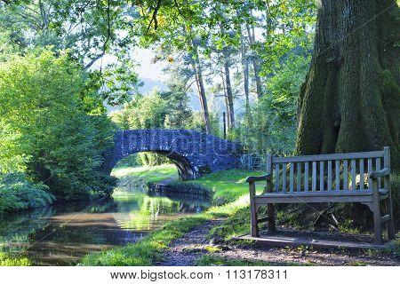stone bridge on a forest edge