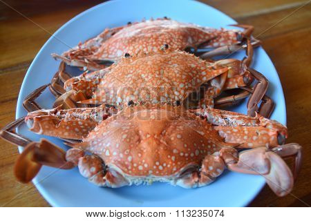 Boiled Crabs On The Wood Background