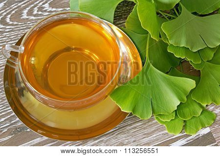 Ginkgo Tea With Fresh Leaves
