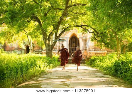 Two little Buddhist novice monks running outdoors under shade of green tree, outside monastery, Myanmar.