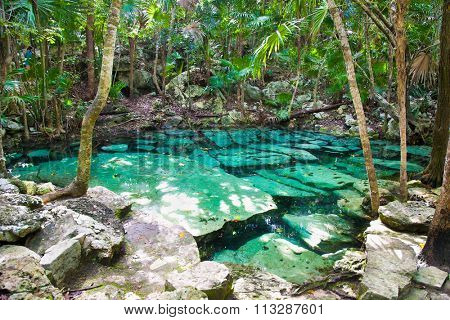 Cenote Azul small lake of mayan jungle  in Yucatan, Mexico.
