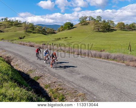 Cyclists road racing