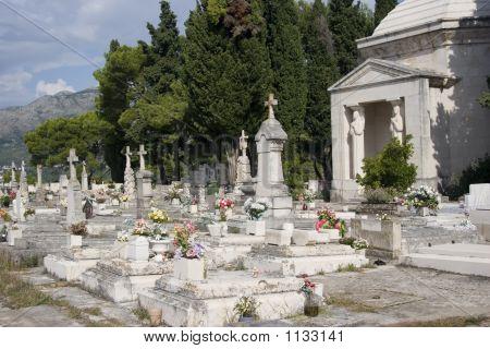 the graveyard in cavtat croatia near to dubrovnik