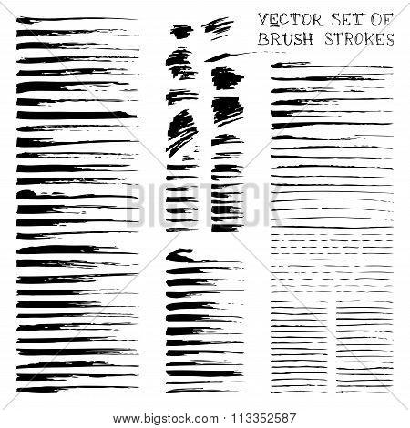Vector Ink Brush Flourishes.