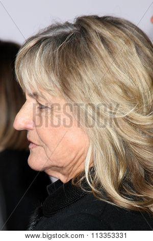 LOS ANGELES - DEC 16:  Irmelin Indenbirken Dicaprio at the
