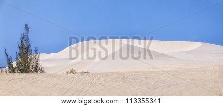 Panoramic white sand dunes of Mui Ne, Phan Thiet, Vietnam