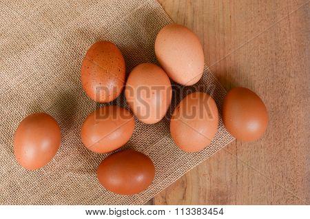 eggs chicken background
