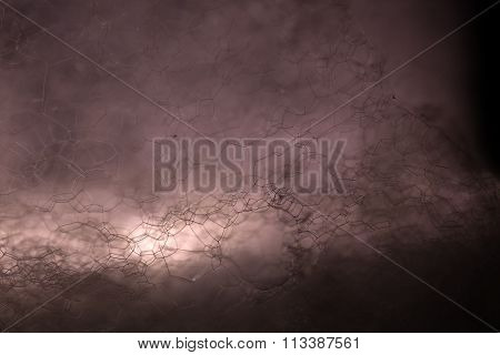 Chemical Foam Backdrop