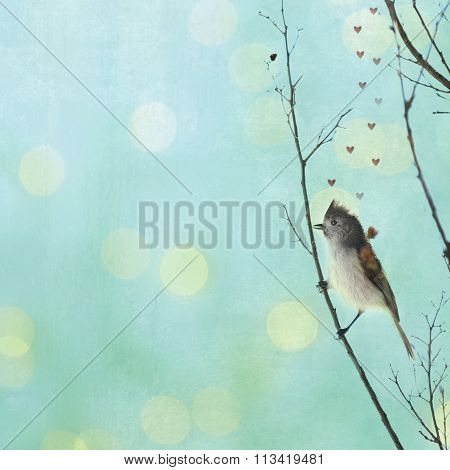 An Oak Titmouse on a branch.