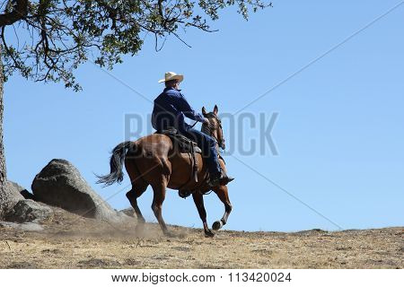 A cowboy loping over a mountain.